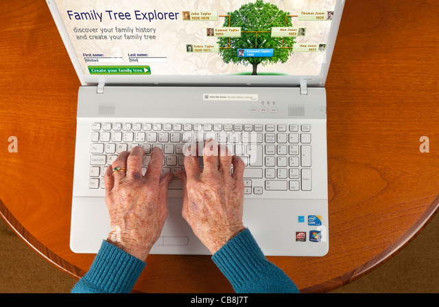 Female elderly hand using a laptop to check the family tree via the internet - Stock-Bilder