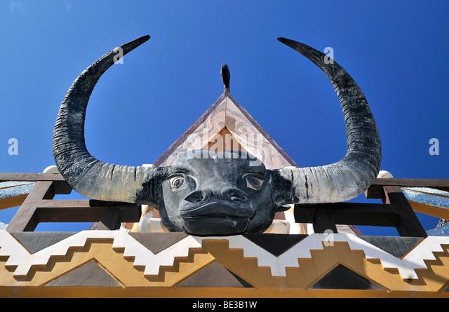 Buffalo Head Stock Photos & Buffalo Head Stock Images - Alamy Horns Inda House