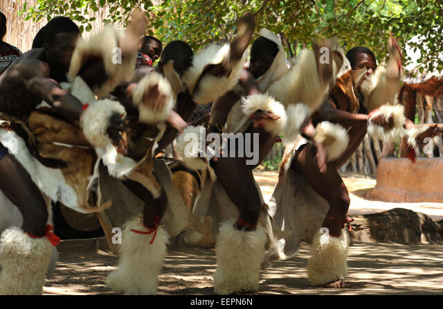 High kicking Swazi dancers perform energetic war dance at Matsamo cultural village Swaziland Cultures Travel destinations - Stock-Bilder