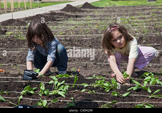 girl scout stock photos amp girl scout stock images   alamy