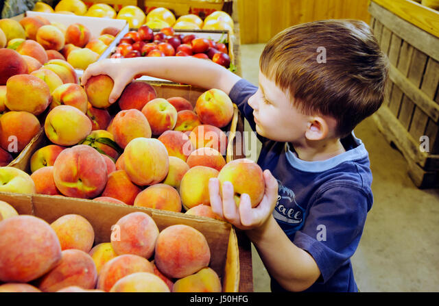 Alabama Thomasville locally grown produce stand for sale boy peaches boxes display fruit nutrition choose agriculture - Stock Image