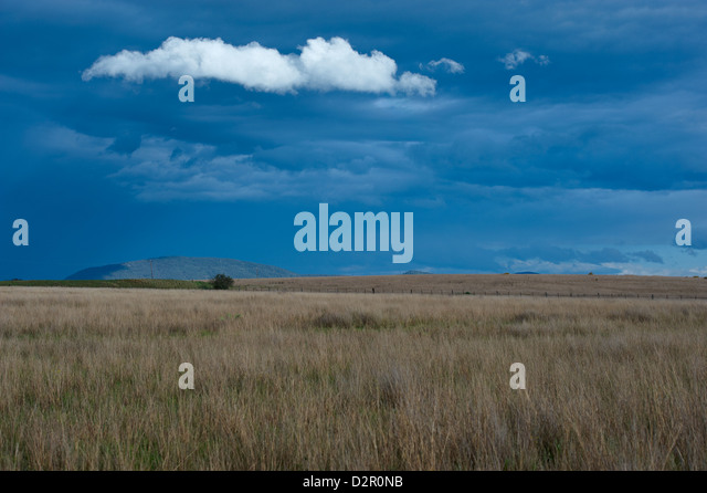 Dry grasslands and stormy sky, New South Wales Australia - Stock Image