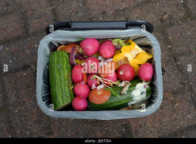 Food waste caddy full of waste discarded food on driveway - Stock Image