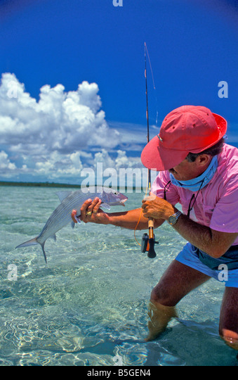 salt water flats fishing angler wading shallow flats holds bonefish bright colors - Stock Image
