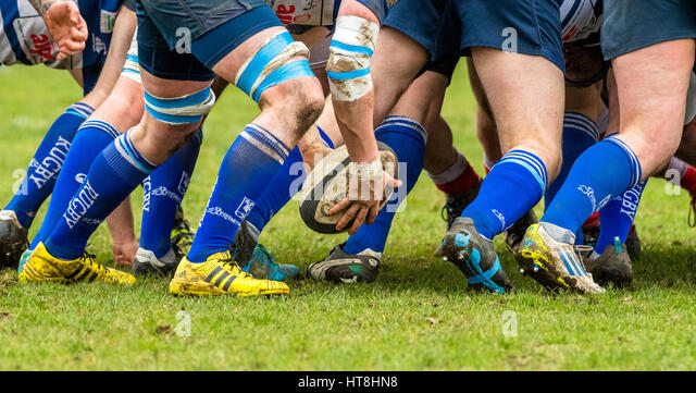 Amateur rugby union clubs