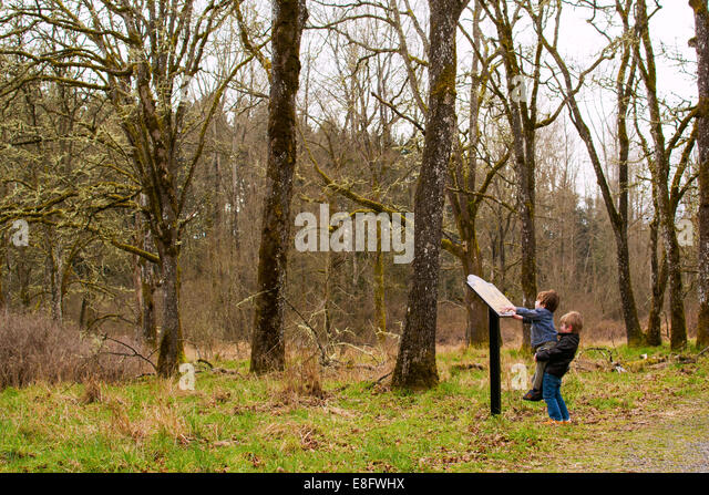 Children (2-3, 4-5) playing in woods - Stock Image