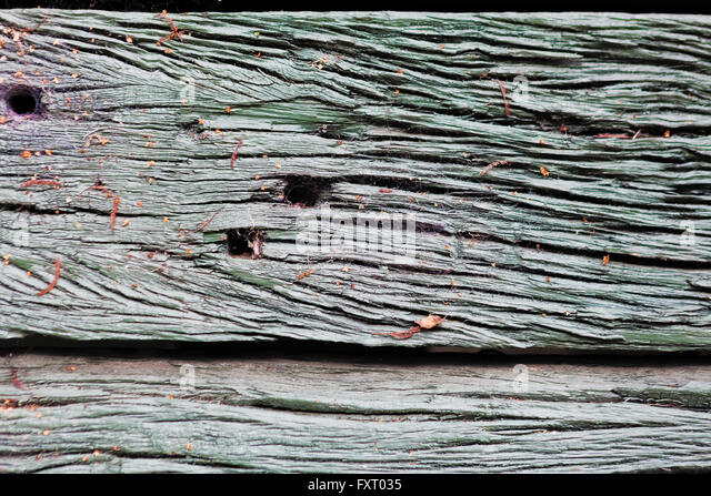 Rustic decayed wooden board texture background. - Stock Image