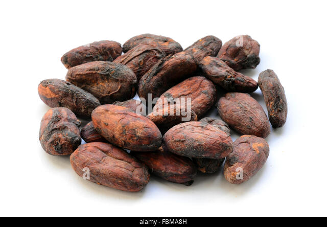 how to cook cocoa beans