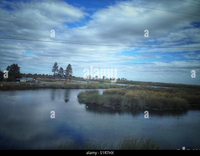 Sacramento-San Joaquin River Delta landscape. - Stock Image