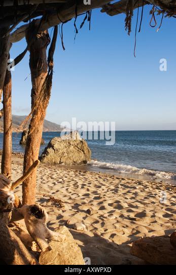 Driftwood House California State Beach