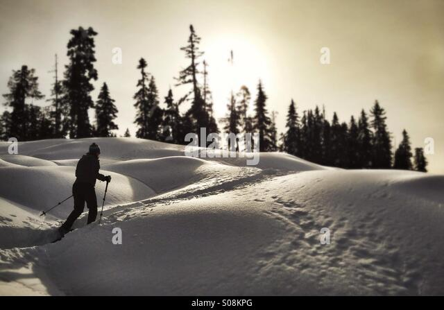 Snowshoeing in Paradise Meadows, Strathcona Park, BC - Stock-Bilder