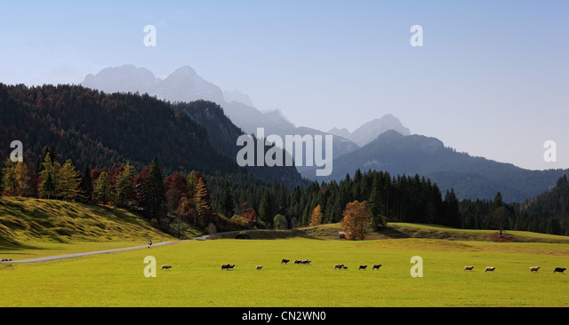 Bavarian alps and pasture, Bavaria, Germany - Stock-Bilder
