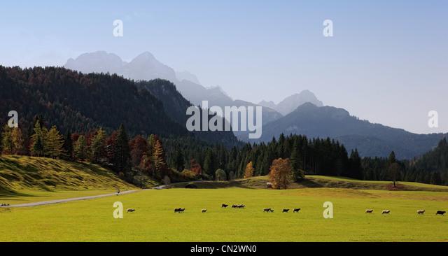 Bavarian alps and pasture, Bavaria, Germany - Stock-Bilder