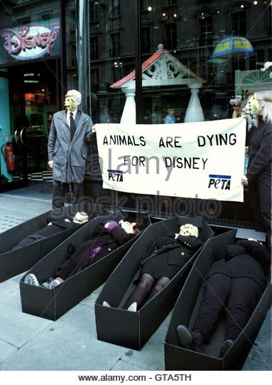 people of the ethical treatment of animals peta and their position in animal rights People for the ethical treatment of animals download report peta, peta, peta, animals, animal rights few questioned why we kill animals for their flesh.
