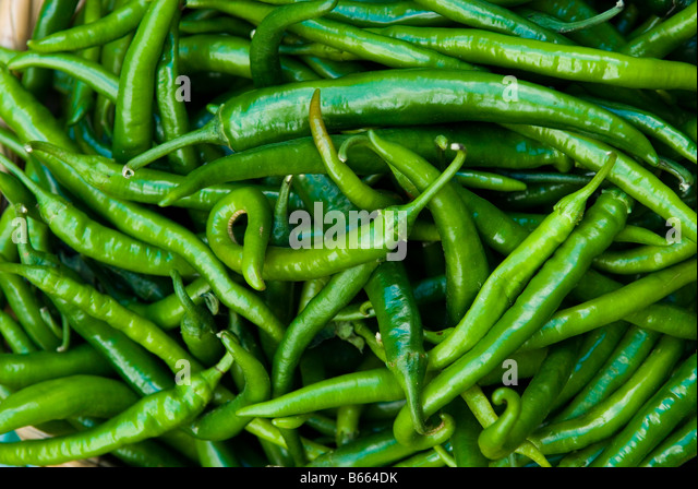 Bio Organic green chillies in Market Lebanon Middle East - Stock Image