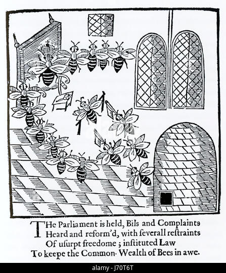 JOHN DAY (1574-1638 ?) English playwright. Woodcut from his book The Parliament of Bees, published in 1641 showing - Stock-Bilder