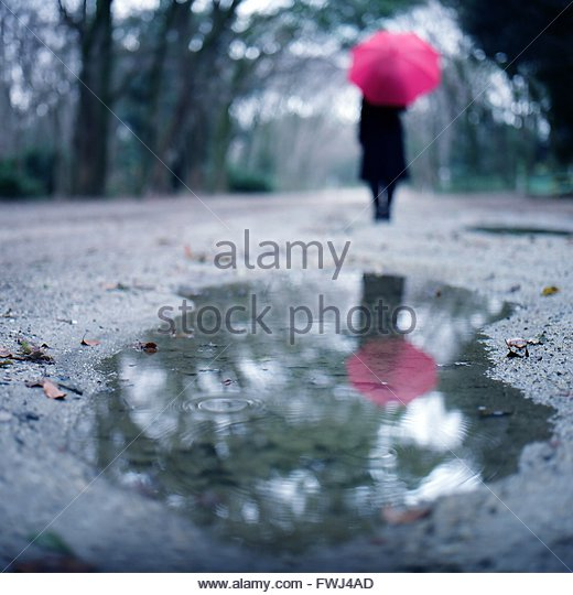 Rear View Of Woman Holding Umbrella Reflecting In Puddle On Street - Stock Image