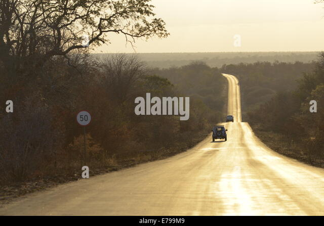 Game viewing on long winding road at sunset, Kruger National Park, South Africa - Stock Image