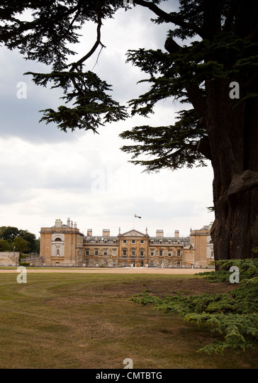 UK, England, Bedfordshire, Woburn Abbey from the Cedar of Lebanon Tree - Stock Image