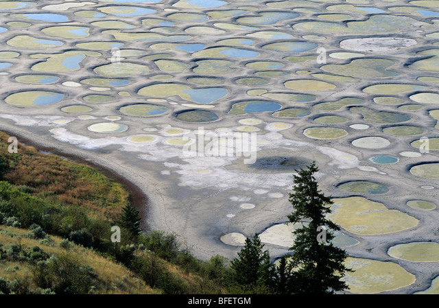 Spotted Lake near Osoyoos, British Columbia, Canada - Stock Image