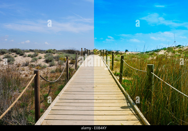 landscape with a broadwalk before and after the image editing process - Stock Image
