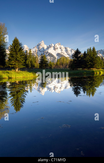 The Tetons reflect in Schwabacher's Landing in Grand Teton National Park, Wyoming. - Stock Image