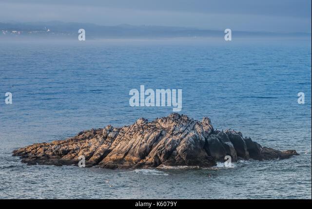 Rocky Nesting Area for Common Murre Near Yaquina Head along Oregon coast - Stock Image