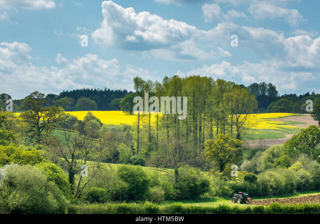 A tractor plowing a field near Alweston, Dorset, England - Stock-Bilder