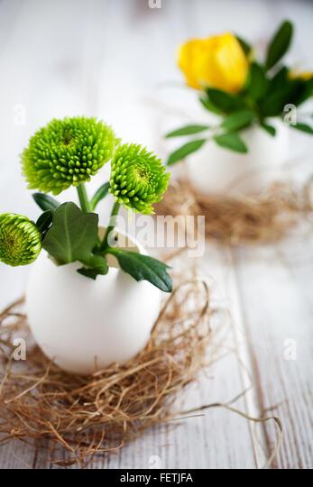 Fresh flowers in egg shells - Stock Image