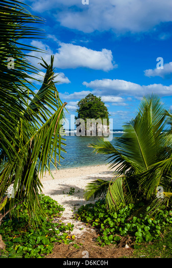Single rock at Coconut Point on Tutuila Island, American Samoa, South Pacific, Pacific - Stock Image