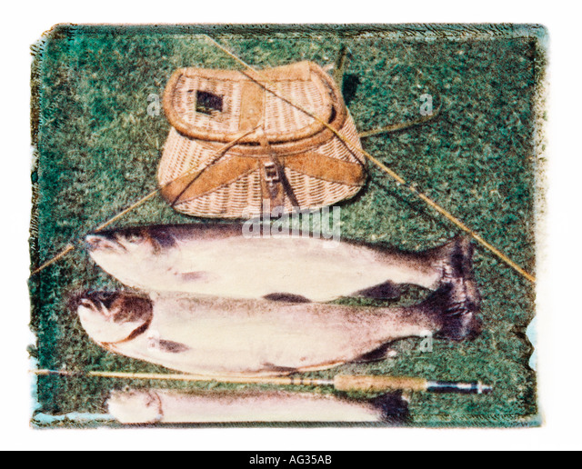 Polaroid transfer image of freshly caught trout lying by fishing poles and creel - Stock Image