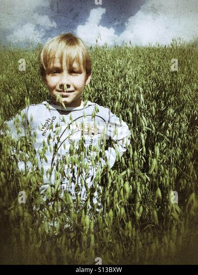 A boy stands in a field of tall oats. - Stock Image