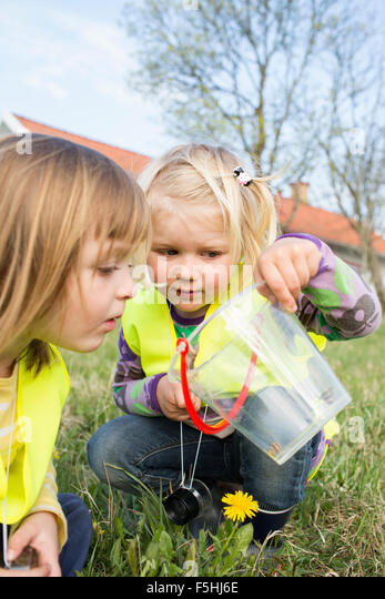 Sweden, Vastergotland, Olofstorp, Bergum, Kindergarten children (2-3, 4-5) playing outdoors - Stock Image