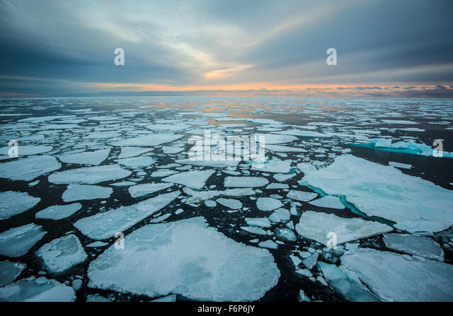 Sunrise over sea ice - Stock Image
