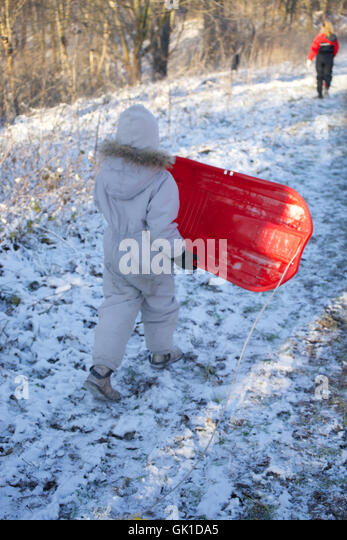 rear view of child carrying sleigh at forest. frozen, environment, kid, winter scene. - Stock-Bilder