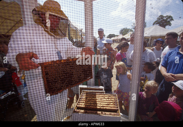 New Jersey Chester 4 H fair beekeeper - Stock Image