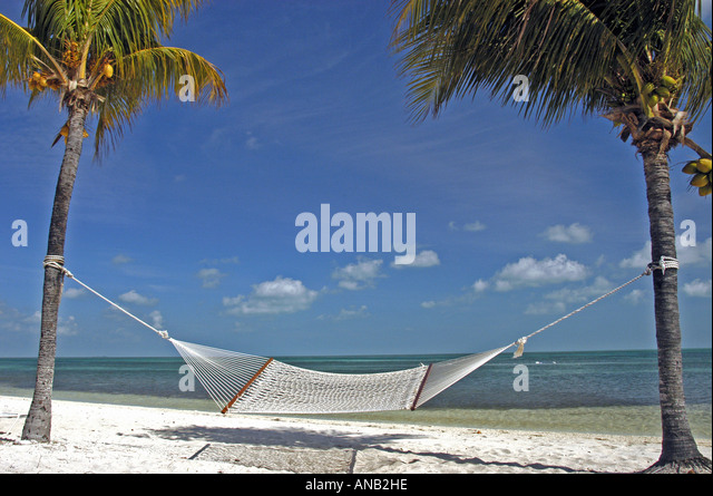 Tropical island empty hammock on deserted beach between two palm trees - Stock Image