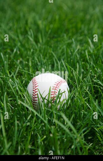 Baseball laying on grass - Stock Image