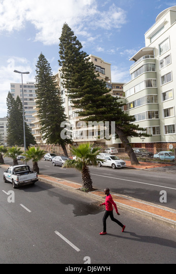 South Africa, Cape Town. Trees Bent Seaward by Wind Bouncing off High-rise Apartment Buildings show Sea Point is - Stock Image