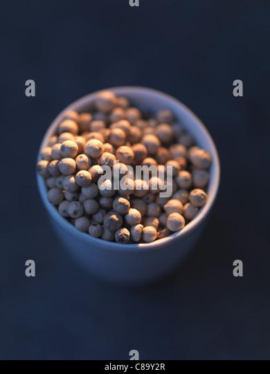 Malabar white pepper - Stock-Bilder