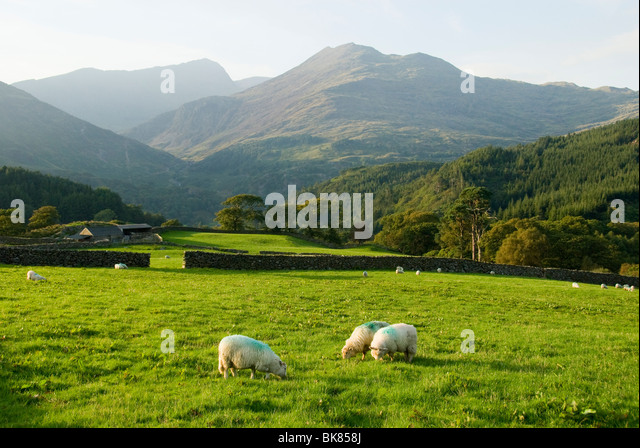 The Snowdon group over Nant Gwynant, Snowdonia, North Wales, UK - Stock Image