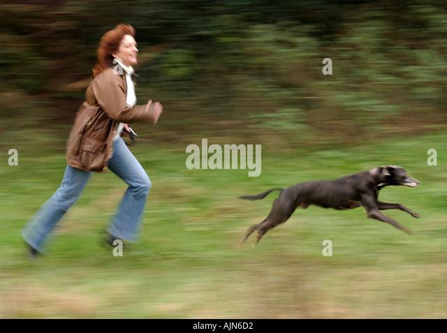 Dog Training Weston Super Mare