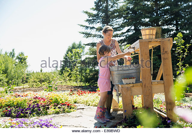 Mother and daughter rinsing fresh picked berries - Stock-Bilder
