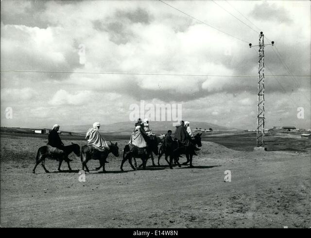 Apr. 18, 2012 - Algeria: Electricity reaches many small Communities - but the mule is still the principal means - Stock Image