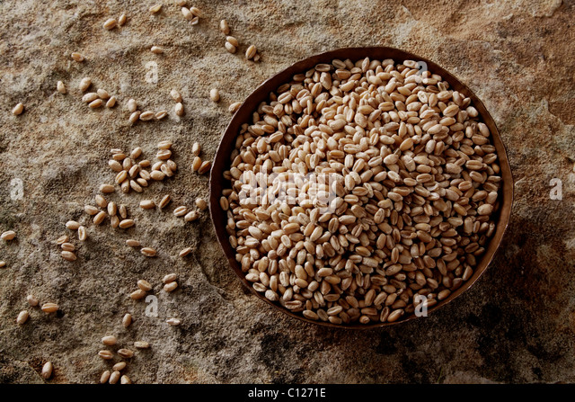 Wheat grains (Triticum) in a copper bowl on a stone surface - Stock Image