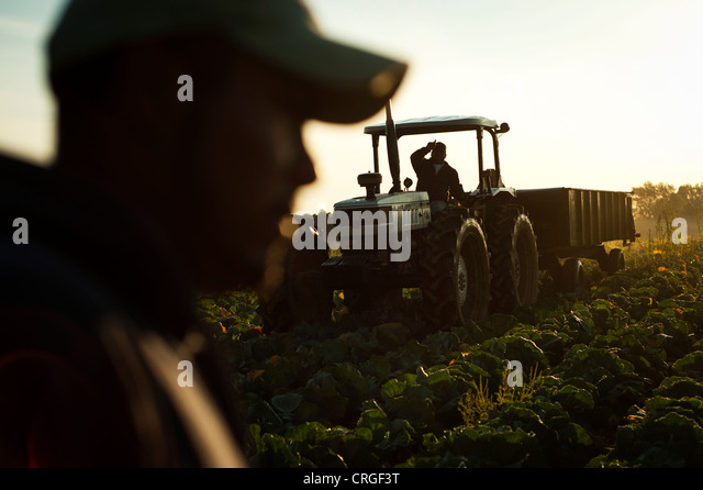 """united farm workers and mexican americans """"the cycle of poverty"""": mexican-american migrant farmworkers testify before  congress in the early 20th century, large-scale commercial agriculture displaced ."""