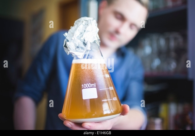 Mid adult man with flask of yeast for home brew beer - Stock Image
