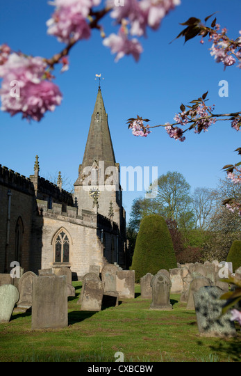 Baslow Parish Church and spring cherry blossom, Derbyshire, England, United Kingdom, Europe - Stock Image