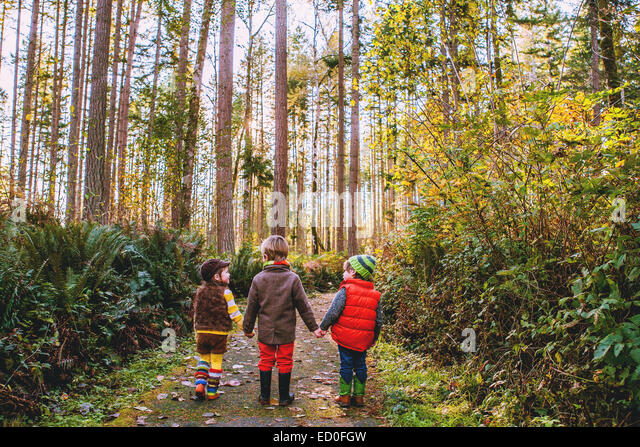 Three boys (2-3, 4-5) in forest - Stock Image