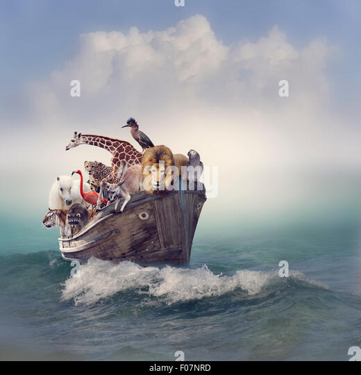 Wild Animals and Birds in an Old Boat - Stock Image